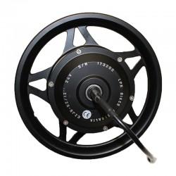 LPR12 Rear wheel motor